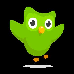 Kiel enmovadigi la Esperanto-lernantojn de Duolingvo?